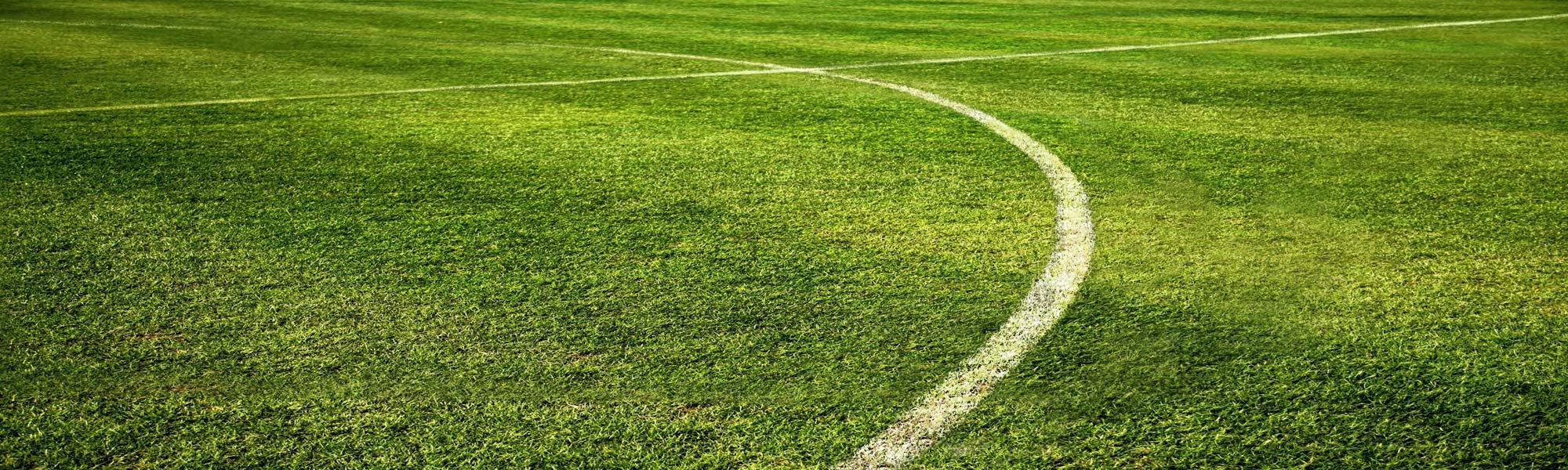 Grassy soccer field showing painted lines